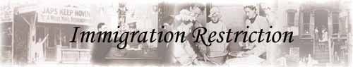 immigration restriction law of 1924 essay