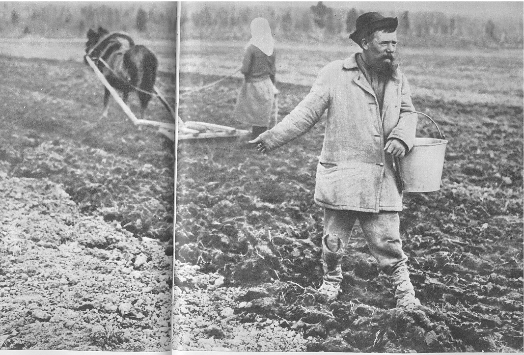 peasants in russia 'stalin's peasants': present reflects past the current inertia in russian society has its origins in the forced collectivization of agriculture during the 1930s.